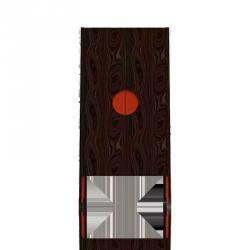 Lacquered wardrobe